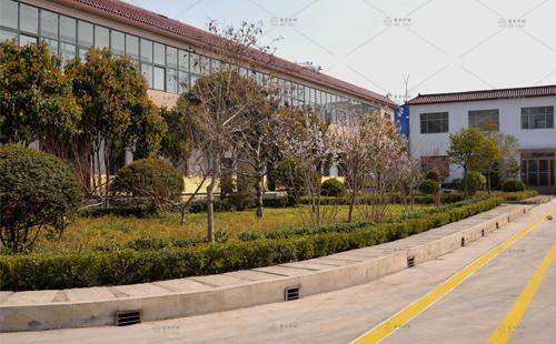 东方炉衬厂区风景